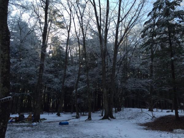 春キャンプ_1516